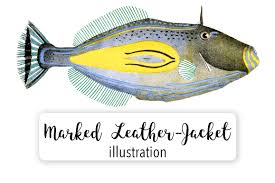 fish vintage horse shoe marked leather jacket example image 1