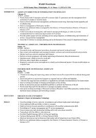 Information Technology Resume Sample Information Technology Assistant Resume Samples Velvet Jobs 86