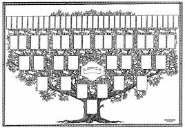 Elizabeth Evllye, Cluinmanagh,E,D,Ireland, Ancestrol, Ancesrtol Chart, Leon David Roper, Roper,  Hasculfus Musard
