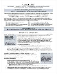 Sample Technology Manager Resume Information Technology Test Manager Resume Sample Best Of 9