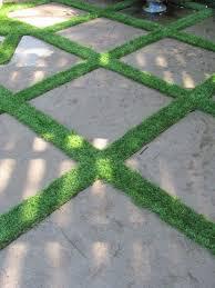 grass between pavers design ideas