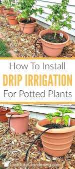 automatic garden irrigation systems follow these easy step by step instructions to install a drip irrigation
