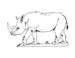 Animals Of Africa Hand Sketched Clip Art Clipart