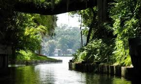 Image result for winter park scenic boat tour