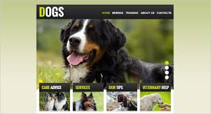 Creating A Pet And Veterinary Website Useful Tips Motocms Blog