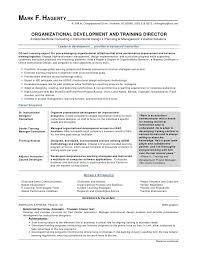 Sales Associate On Resume Fascinating Retail Sales Associate Resume Sample From Organizational Development