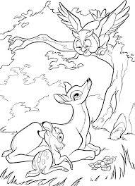 Il Gufo Di Disney Bambi Da Stampare E Da Colorare Gratis Disegni