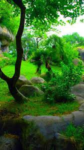 Wallpapers Phone Nature Green - 2021 ...