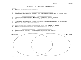 Venn Diagram Comparing Meiosis And Mitosis Mitosis Vs Meiosis Worksheet Graphic Organizer For 9th