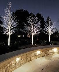 Modern lighting in the garden transformed the outdoor area