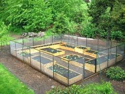 how to make a raised bed garden. How To Build A Raised Vegetable Garden Full Image For Bed Make