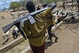 Plateau governor slams curfew after herdsmen killed monarch, others