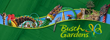 busch garden tampa florida. From Wildlife To Wild Rides, Busch Gardens Is Tampa\u0027s Ultimate Family Adventure Destination. Tampa One Of 10 Parks Across The U.S. Operated Garden Florida S