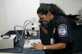 filecbp checking authenticity of a travel documentjpg cbp officer job description