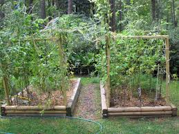 image of bed ideas vegetable garden layout