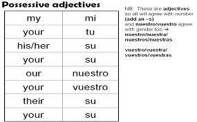 Possessive Adjectives Possessive Adjectives Spanish