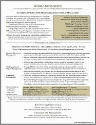 Professional Resume Writers Nyc Inspirational Colorful Professional