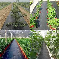 agfabric weed barrier landscape fabric