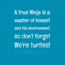 Ninja Turtle Quotes Gorgeous Amazing Ninja Turtle Day Quotes Quotes About Life Positive