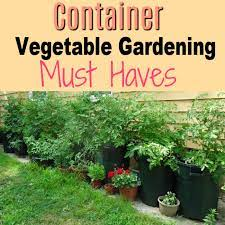 container vegetable gardening must