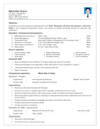 Resume For Sales Manager In India Professional Resume Templates