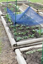 garden shade cloth. DIY Garden Shade Cloth D