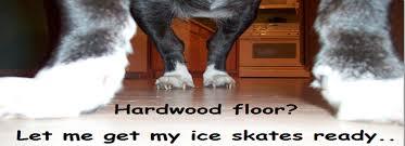 why do dogs slip on hardwood floors