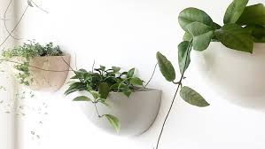 summer wall planters