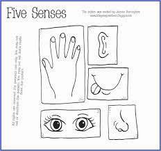 Fearsome Senses Coloring Pages Free Photo Ideas My Five Download 5