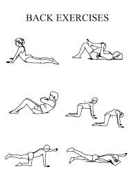 lower back pain relief exercises at home