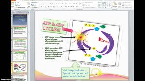 Apa Citation Clipart 3 Clipart Station