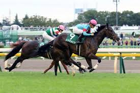 Breeders Cup Charts 2013 Ria Antonia Foal Ria Amelia To Race In Japan Grade 1