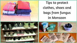 tips to protect clothes shoes and bags from fungus in monsoon