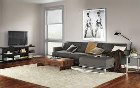 gray sofa living room decor. gray sofa living room ideas fantastic on inspiration interior design with decor