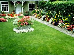 flowers, gallery, garden, hd, images ...