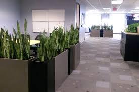 office planter boxes. Planter Boxes Home Office Design Ideas Renovations Photos Melbourne K