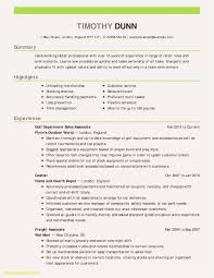 Resume Professional Services 65 Customer Service Resume Examples Jscribes Com