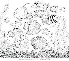 Ocean Coloring Pages For Adults Ocean Coloring Page Lost Ocean