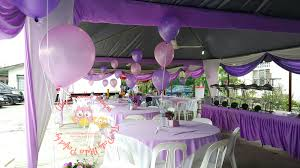 Sofia The First Bedroom Decor Theme Sofia The First Its More Than Just A Party