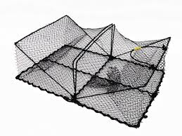 com promar collapsible crawfish crab trap 24 x18 x8 american maple inc tr 101 fishing accessories fishing bait traps sports outdoors