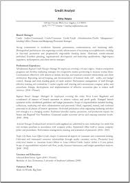 Credit Risk Business Analyst Resume Resume For Your Job Application