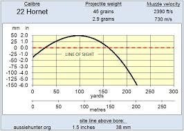22 Hornet Aussiehunter