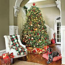 ... lights, matching ornaments, sweets and much more and more decorative  pieces have filled the tree making the Christmas spirit more colorful and  cheerful.