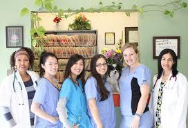 garden grove pet hospital. Boulevard Animal Hospital Garden Grove Pet 2