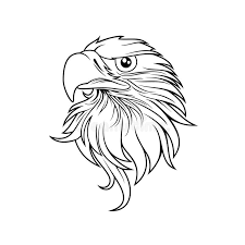 bald eagle template eagle head logo template hawk mascot graphic portrait of a bald
