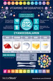 Cyanocobalamin Vitamin B12 Rich Food Icons