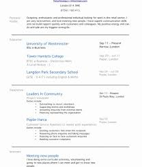 profile summary in resume for freshers personal profile examples for resumes luxury how to write profile