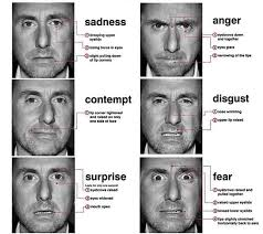 Lie To Me Micro Expressions Chart Guide To Reading