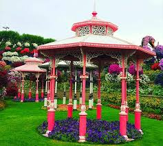 gazebos are decorated with petunia flowers at the dubai miracle garden