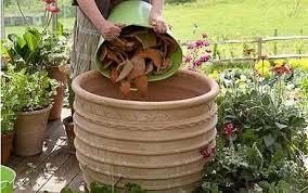 Container Garden Ideas Uk Container Gardening First Find Your Container Garden Ideas Uk